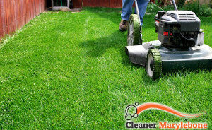 lawn-mowing-services-marylebone