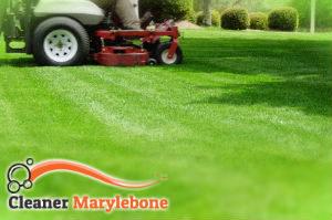 grass-cutting-marylebone