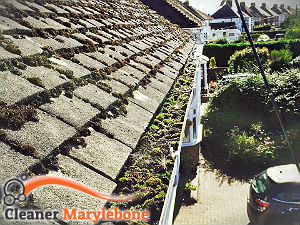 gutter-cleaning-marylebone